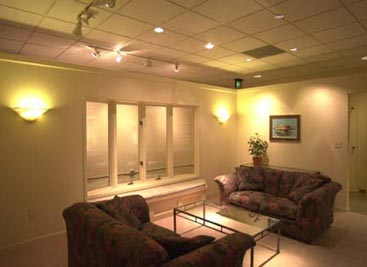Energy-Efficient Living Room - Living Room Lighting