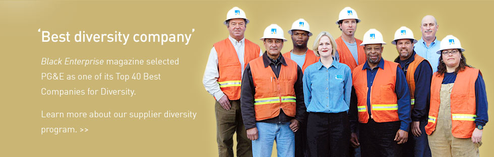 Click here for supplier diversity information page