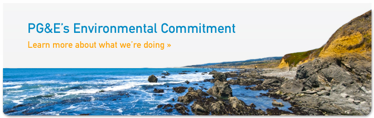 envirnmental commitment