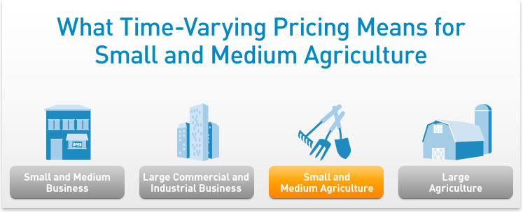 What Time-Varying Pricing Means for Small and Medium Agriculture.
