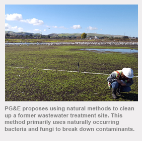 PG&E proposes using natural methods to clean up a former wastewater treatment site. This method primarily uses naturally occurring bacteria and fungi to break down contaminants.