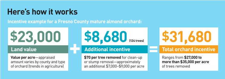 Here's how it works Incentive example for a Fresno County mature almond orchard: $23,000 Land value Value per acre—appraised amount varies by county and type of orchard (trends in agriculture) + $8,680 (124 trees) Additional incentive $70 per tree removed for clean-up or stump removal—approximately an additional $7,000–$9,000 per acre = $31,680 Total orchard incentive Ranges from $27,000 to more than $35,000 per acre of trees removed