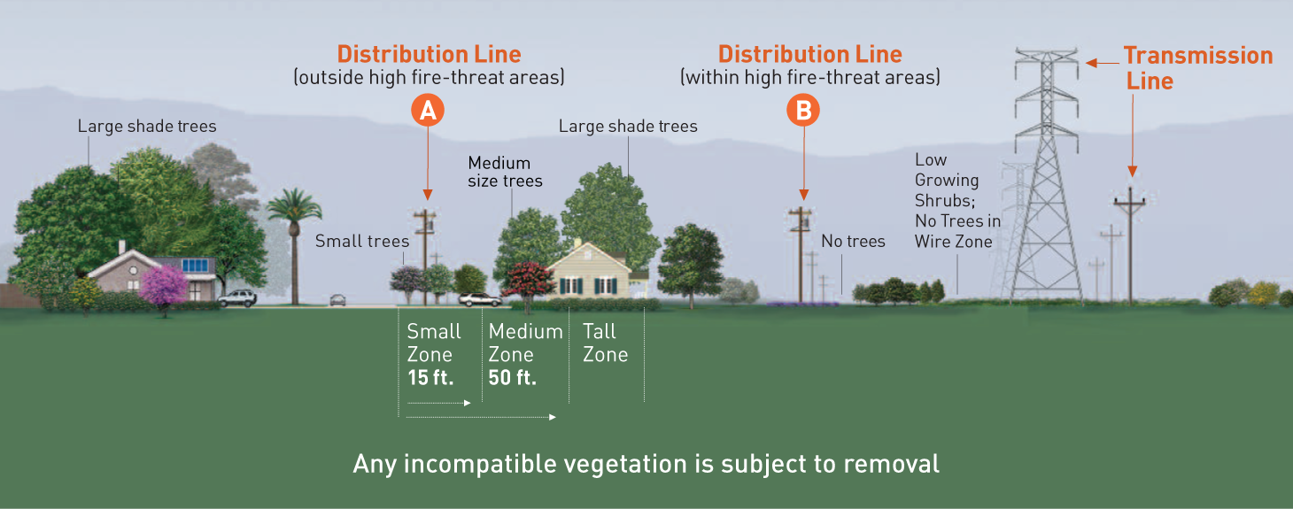 Guidelines for planting near distribution lines: Outside high-fire threat districts, plant only small trees that at maturity are no taller than 25 feet. Inside high-fire threat districts, plant only low-growing, fire-resistant shrubs. Guidelines for planting near distribution lines: Plant only low-growing shrubs in the wire zone. Along the border, plan only small shrubs and trees no taller than 10 feet.