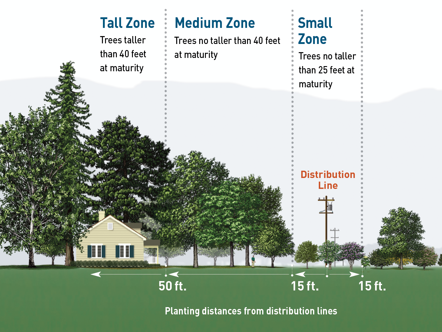 PG&E's right tree, right place guidelines