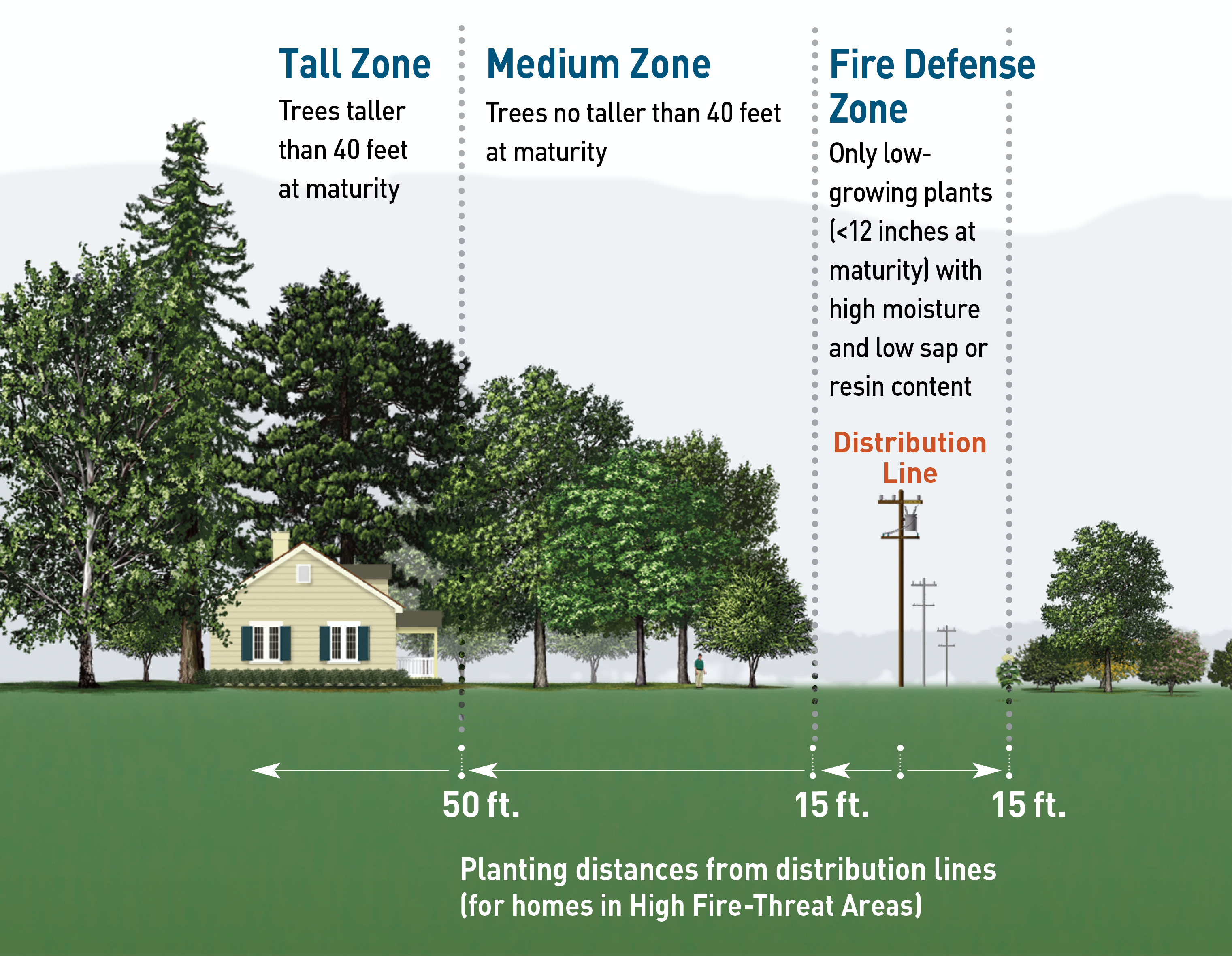 Planting guidelines near distribution lines within High Fire Threat Areas
