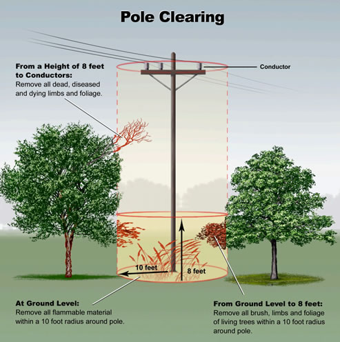 Pole Clearing