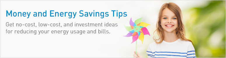 Money and Energy Savings Tips: Get no-cost, low-cost, and investment ideas for reducing your energy usage and bills.