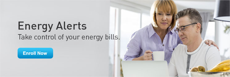 Energy Alerts. Take control of your energy bills