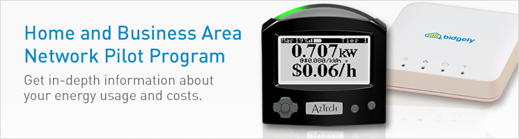 Home and Business Area Network Pilot Program: Get in-depth information about your energy usage and costs.