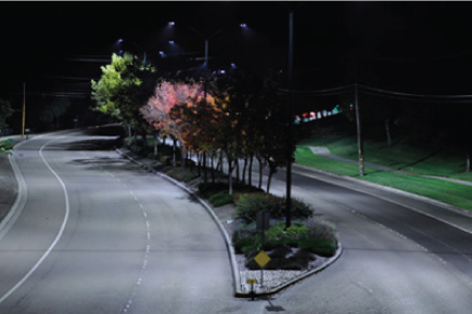 LightingWebPages-LED_StreetLights-rebates.jpg