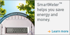 PG&E's SmartMeter Program