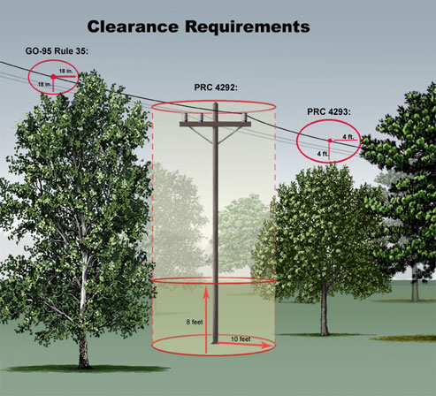 Building Regulations Near Trees